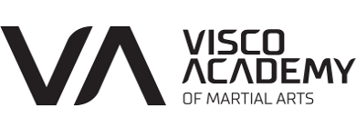 Visco Academy of Martial Arts